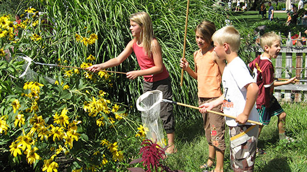 Teach Your Child Science with a Home Garden